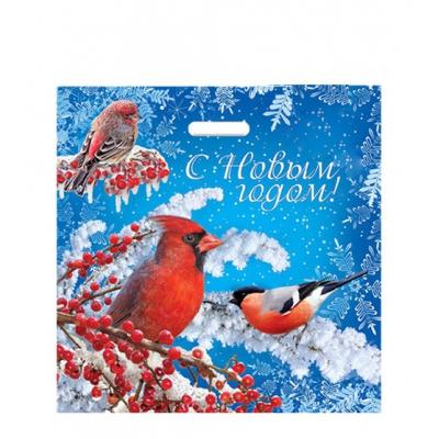 Пакет новогодний Птицы  45х45, 70 мкм
