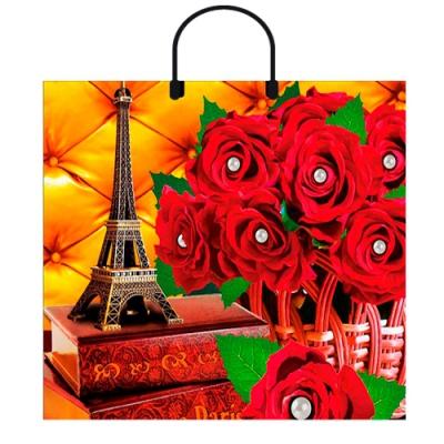 """Пакет """"Париж"""", 38х36, 90 мкм"""