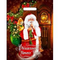 Пакет новогодний Время волшебства, 31х40 см, 60 мкм