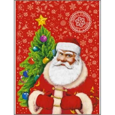 """Подарочный полипропиленовый пакет с клапаном """"Повелитель чудес"""", 37х46 см, 35 мкм, новогодняя упаковка"""